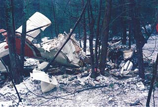 Noreen Renier, Airplane crash case